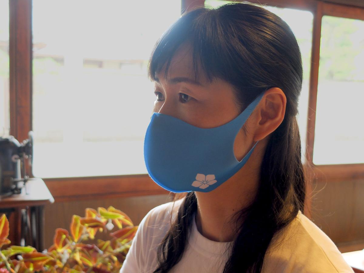 明智光秀 家紋マスク